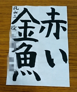 IMG_20170427_17