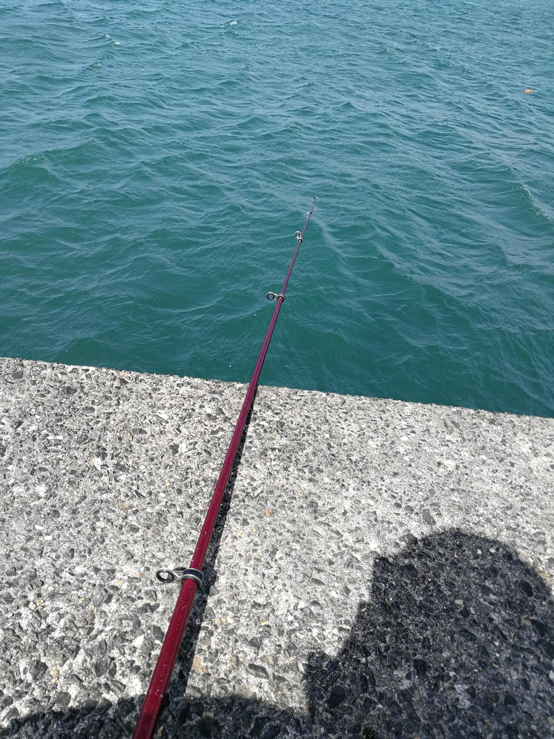 久しぶりに釣りにいきました。